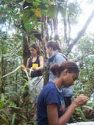 Seychelles Green Education and Research Programmes